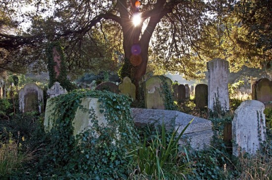 Бромптонское кладбище
