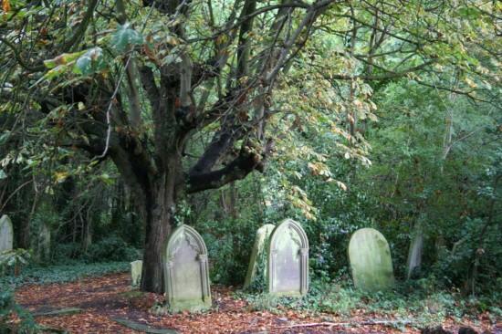 Кладбище Западного Норвуда3