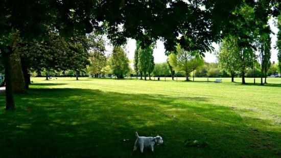 Спенсер Парк в Лондоне