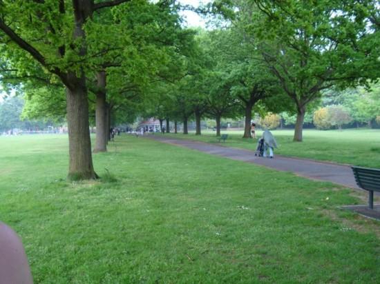 Парк Уолпол в Лондоне1